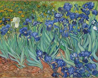 Irises by Vincent Van Gogh Fine Art Reprint.