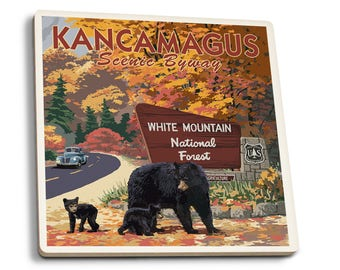 White Mt NH - Kancamagus Scenic Byway - LP Artwork (Set of 4 Ceramic Coasters)