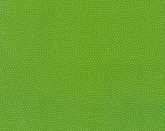 1/2 Yard Timeless Treasures Spin Basics C5300 in Lime
