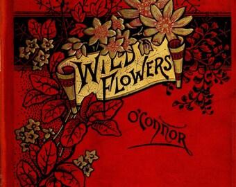 "Vintage Book Cover Print ""Wild Flowers"" - Victorian Gardening Book - Antique Book Art Print - Gardener Gift"