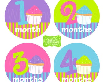 Cupcake Baby Monthly Stickers - Baby Bodysuit Stickers - Monthly Baby Stickers - Girl Monthly Stickers - 001
