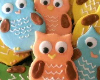 Owl cookies (12 cookies)