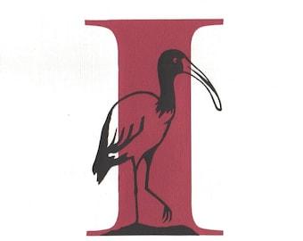 I is for Ibis - Print from original papercut art