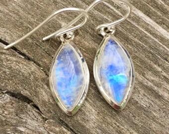 Blue moonstone dangle earrings.