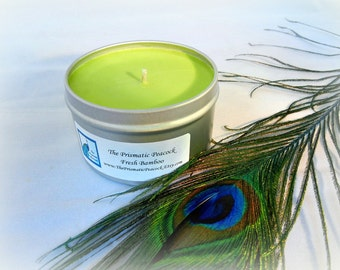 fresh bamboo scented soy candle 8 oz silver travel tin green