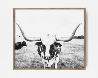 bw steer print, bw longhorn print, longhorn wall art, longhorn art, longhorn print, cow print, steer print, steer wall art, bw country decor