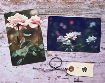 Rose Flower Photography Notecard Set, Carte Postale, SnailMail, Photography Notecards, Postcrossing, Penpal, Fine Art Flower Photo Cards