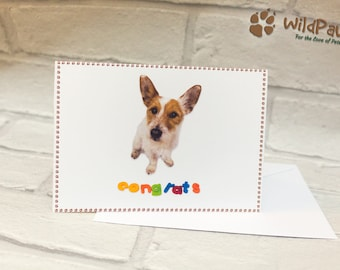 Dog Congrats Card, Dog, Dog Lover, Dog Card, Dog Congratulations Card, Congratulations, Congrats Card, Pet Card, Congrats, Terrier, Cute