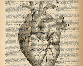 Dictionary Art Print - Heart Diagram - Upcycled Vintage Dictionary Page Poster Print - Size 8x10