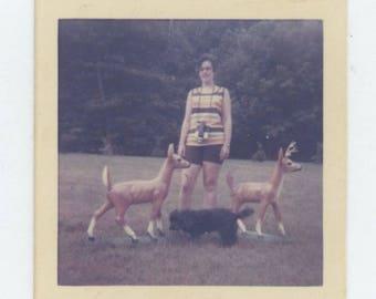 Vintage Snapshot Photo: Lawn Ornaments, c1960s-70s  (81633)