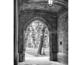 Walkway, University of Chicago Sepia toned, Black and White, Collegiate Gothic Architecture, Campus landscape