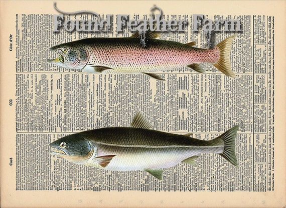 """Vintage Antique Dictionary Page with Antique Print """"Two Salmon Fish"""""""