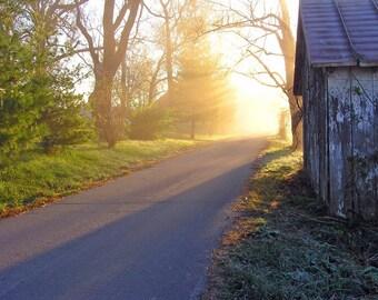 Photography Print Morning Sun 4x6 Primitive Rustic Fine Art Photo Country Road Nature Sunshine Dawn Sunrise
