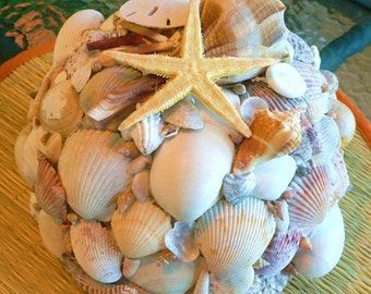 SEASHELL LAMP Accent Light, Night Light, Coquillage, Accent Lamp