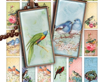 75% OFF SALE Spring Birds Digital collage sheet PR015 printable download 1x2 inch image rectangle glass pendant resin 1x2 domino bird image