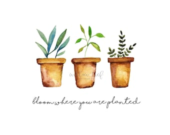 Bloom where you are planted , Wall art, Watercolor Print, kitchen art , watercolor kitchen art, watercolor quote, potted plant watercolor
