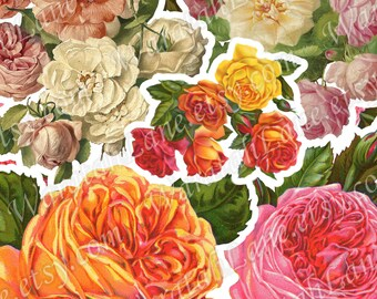 Digital Collage Sheet Printable Roses collage sheet flowers collage sheet for Scrapbooking Cardmaking and papercrafts