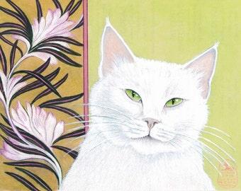 Gato Blanco, happy white cat with green eyes