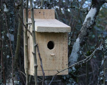 Untreated natural pine wood birdhouse