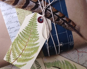 Fern gift tags (set of 6)