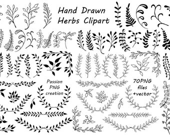 Big Set of Hand Drawn Herbs Clipart, Leaves clip art, Herbs Silhouette, PNG, EPS, AI, Vector, Laurel Clipart, Personal and Commercial Use