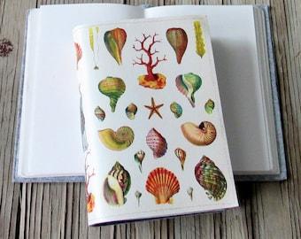 vintage seashells journal, diary notebook planner, seashell beach gratitude journal - gift giving for under 30