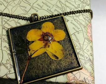 Colorado Pressed Wildflower Necklace