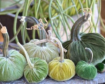 Gorgeous Greens Velvet Pumpkins and Acorns with Real Pumpkin Stems