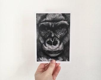 Greeting Card- Gilbert