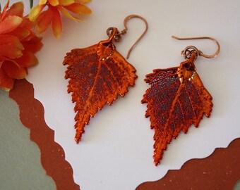 Birch Copper Leaf Earrings, Birch Leaf, Real Leaf Earrings, Copper, Nature, Birch Earrings, Copper Earrings, LESM195