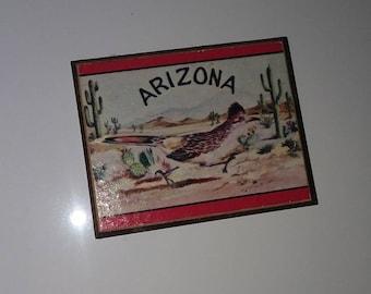 Arizona bird vintage magnet -vintage magnets- vintage magnet- kitchen magnets- refrigerator magnets- kitchen decor- vintage kitchen
