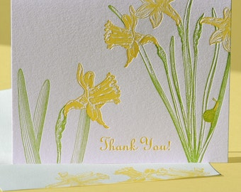 Daffodil Thank You and Blank Note Cards