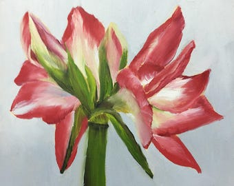 Oil Painting Blossoming Red Amaryllis 6x6 by JS
