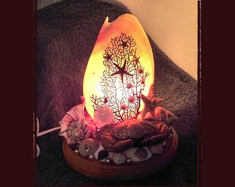 "7"" Melo Melo Sea Shell Table Light, Beach/Coastal/Nautical Decor, Whimsical/Romantic/Accent Light, Wedding/Anniversary/Housewarming Gift"