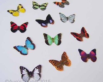 12 Small Paper Butterflies, Realistic 1 inch Paper Butterflies
