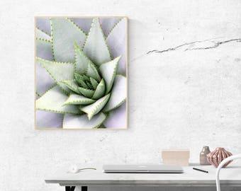Succulents Print Succulents Clipart Succulent Leaves Cacti Print Cacti Printable Art Cactus Poster Cactus Photography Cacti Printable
