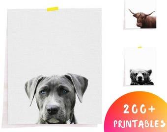 Dog Digital Download, Dog Printable Art, Dog Downloadable, Nursery Animal Download, Pet Portrait Digital, Dog Digital File, Nursery Digital