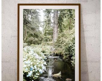 Garden Art Print, Garden Print, Garden Art Flowers, Garden Photography, Garden Posters, Hydrangea Wall Flowers, Hydrangea Flowers, Hydrangea