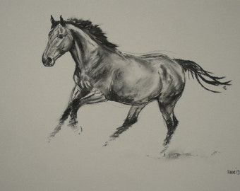 SALE Original horse art equine art energy and movement equine horse charcoal movement art drawing 'Happy I' by H Irvine
