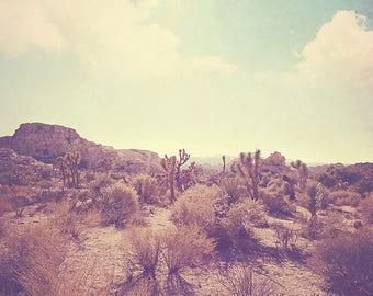 landscape photo, Palm Springs desert rocks Joshua Tree national park California travel, photography, nature, blue yellow, Coachella inspired