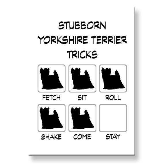 Yorkshire Terrier Stubborn Tricks Fridge Magnet