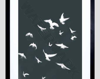 Flock of Birds Print, Black White Birds, Flying Bird Print, Birds in Flight, Bird Wall Art, 12x16'' Art Print F12x12095