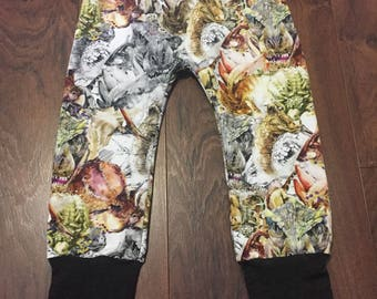 Watercolor Dino Dinosaur Bunny Bottom Grow With Me Pant