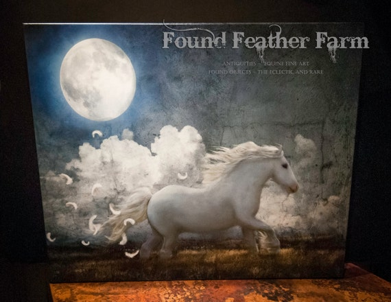 """Museum Wrapped Canvas Giclee of a Digital Art Image Titled """"White Feathered Moon"""""""