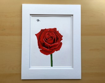 Rose drawing, wall art drawing, original pencil drawing,  colored pencil drawing, 11x14 drawing, housewarming gift