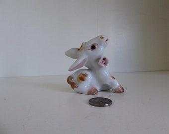 Cute little donkey with flower -