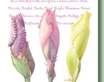Unique Elegant Fine Art Botanical Greeting Card - Iris Trio