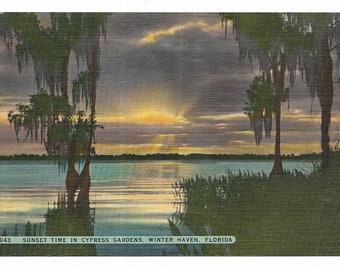 Vintage Florida Linen Postcard Cypress Gardens Sunset Time In Winter Haven UNUSED