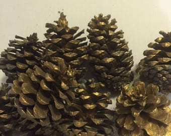 Set of 9 Gold Sprayed Pinecones