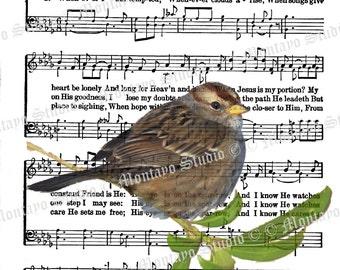 HIS EYE On The Sparrow  Wildlife Nature bird Spiritual Hymn Song Page  4x6, 5x7, or 8x10  print + bookmark + tag FREE Ship #home #wildbird